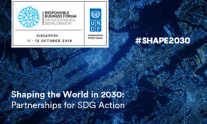 Responsible Business Forum on Sustainable Development 2018